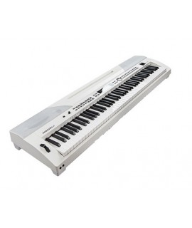 Medeli SP-4200 (PIANO ONLY PACKAGE)